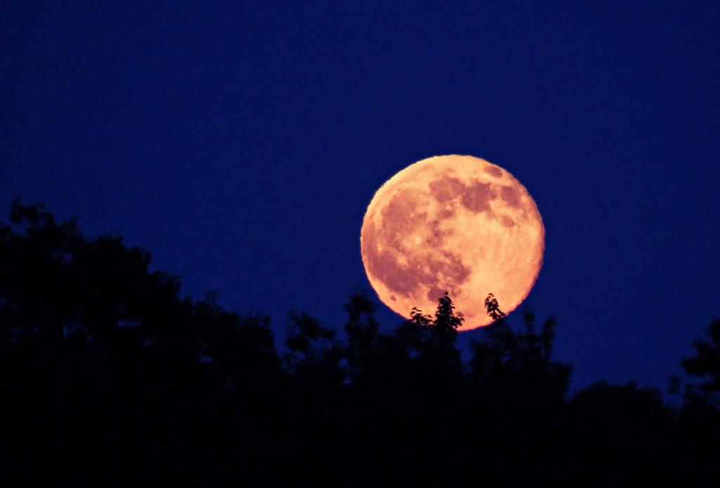 moon1d
